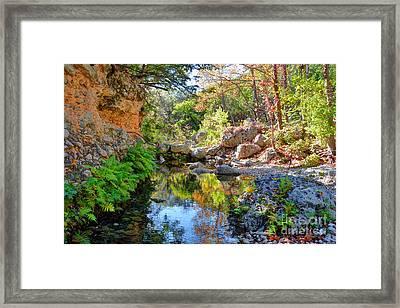 Pond At Lost Maples Framed Print