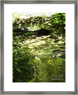 Pond Bridge Framed Print