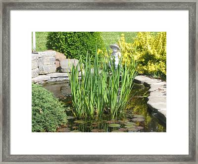 Framed Print featuring the photograph Pond Garden by Margaret Newcomb