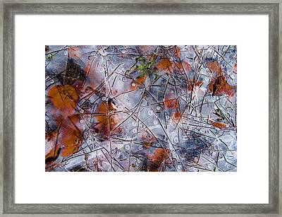 Pond Ice Art Framed Print