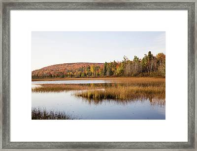 Pond In A Forest, Alger County, Upper Framed Print
