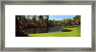 Pond In A Garden, Middleton Place Framed Print