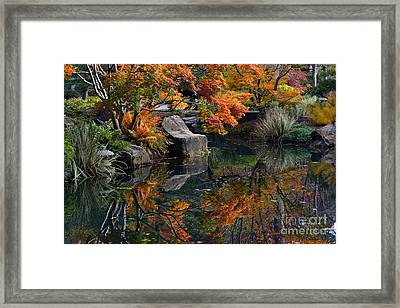 Pond In Autumn Framed Print by Lisa L Silva