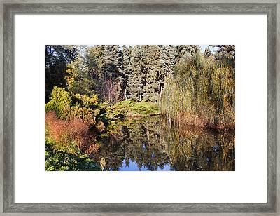 Pond In Skaryszewski Park Framed Print by Artur Bogacki