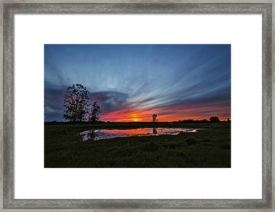 Pond In The Pasture Framed Print