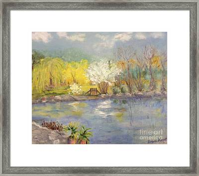 Pond In Ulm Germany In Spring Framed Print