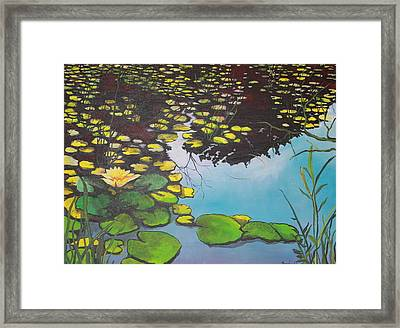 Pond Framed Print