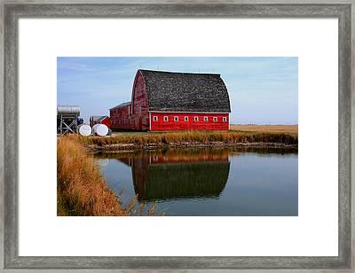 Pond Reflections Framed Print by Larry Trupp