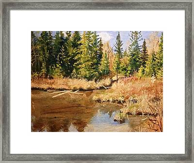 Pond Reflections Framed Print by Walt Maes