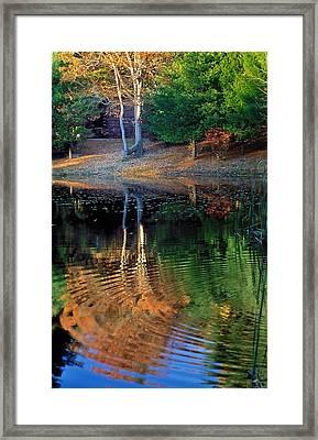 Pond Reflections Framed Print by William McEvoy