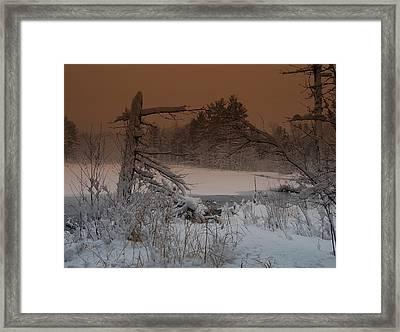Pond Scape Framed Print by Mim White