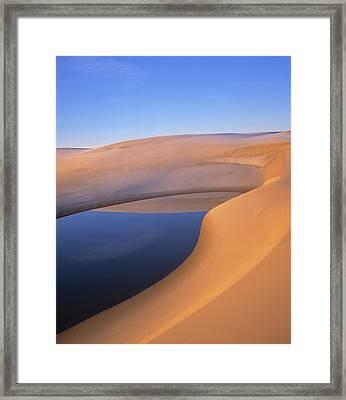Pond, Umpqua Dunes, Oregon, Usa Framed Print by Natural Selection Robert Potts