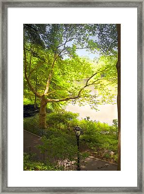 Pond View - Central Park - Nyc Framed Print by Madeline Ellis