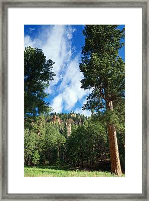 Ponderosa And Cliffs In The Jemez Mountains New Mexico Framed Print by Mary Lee Dereske