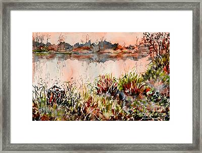 Ponds Untold Stories Framed Print