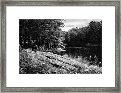 Framed Print featuring the photograph Pondside by Mark Myhaver