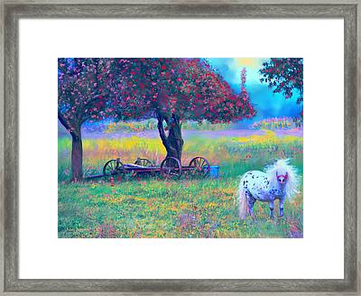 Pony In Pasture Framed Print