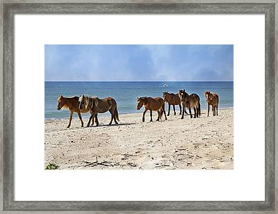 Pony Procession  Framed Print by Betsy Knapp
