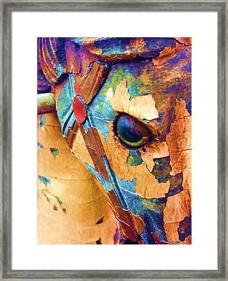 Pony Framed Print by Julio Lopez