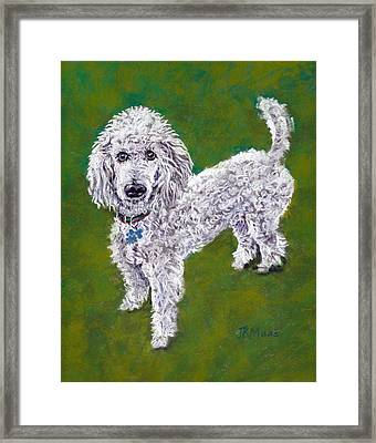 Framed Print featuring the pastel Poodle Pal by Julie Maas