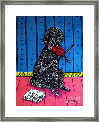 Poodle Playing Violin Framed Print by Jay  Schmetz