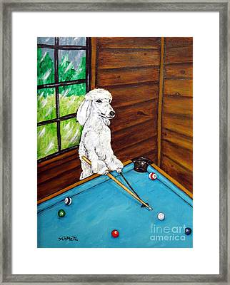 Poodle Plying Pool Framed Print by Jay  Schmetz