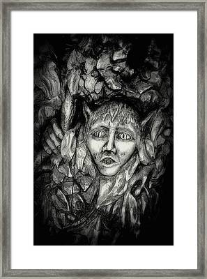 Pooka Framed Print by Paul Nixon
