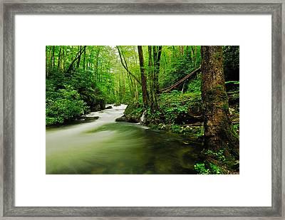 Pool In Little River Framed Print