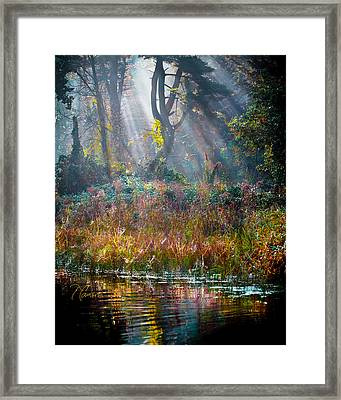 Framed Print featuring the photograph Pool Of Optimism by Tom Cameron