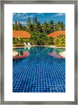 Pool Time Framed Print by Adrian Evans
