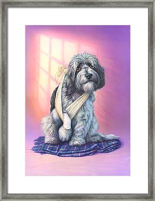 Poorly Paw Framed Print by Andrew Farley