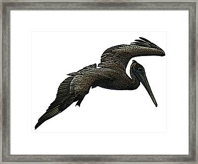 Pop Art - Pelican Selection Framed Print