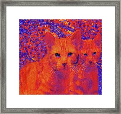 Pop Art Cats Framed Print by Jane Schnetlage