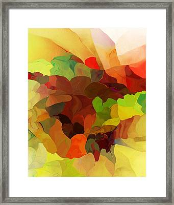Popago Framed Print by David Lane