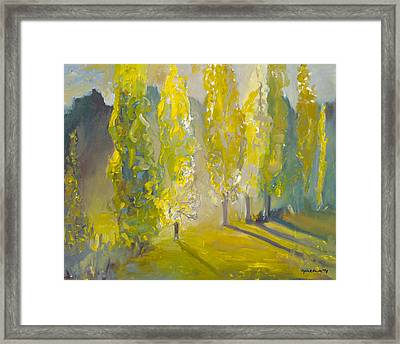 Poplars In The Morning Framed Print