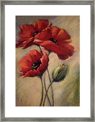 Poppies And Bud Framed Print by Linda Smith