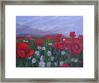 Poppies And Daisies Framed Print