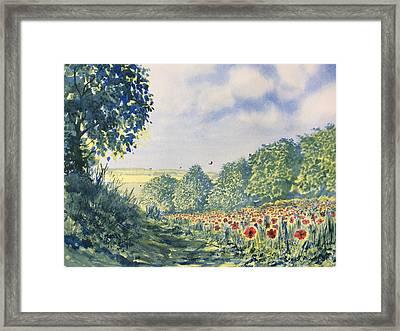 Poppies A'plenty Framed Print