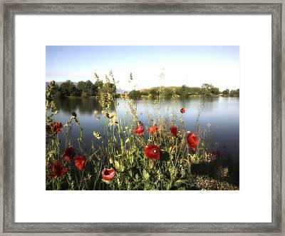 Poppies At Lake Framed Print