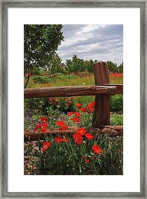 Poppies At The Farm Framed Print by Lynn Bauer