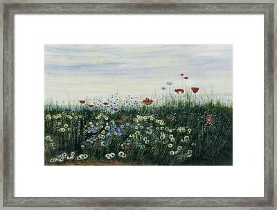 Poppies, Daisies And Other Flowers Framed Print