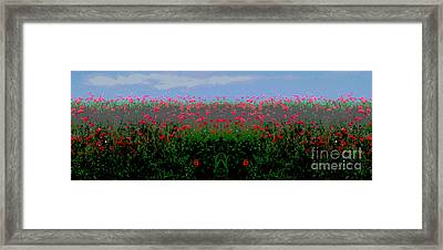 Poppies Field Framed Print