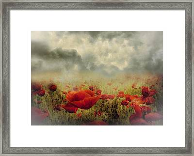Poppies From Heaven - Vintage Framed Print
