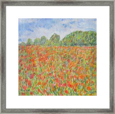 Poppies In A Field In Afghanistan Framed Print