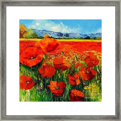 Poppies Framed Print by Jean-Marc Janiaczyk