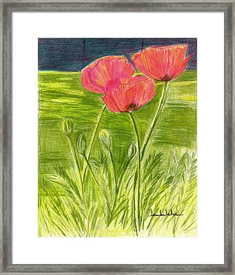 Poppies Framed Print by Lou Belcher