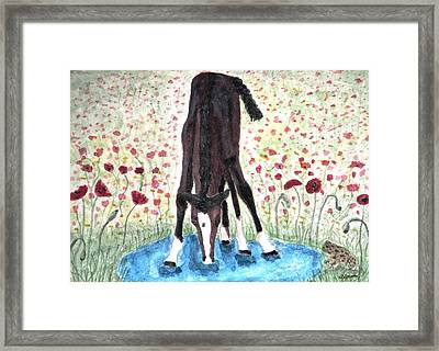 Poppies N  Puddles Framed Print by Angela Davies