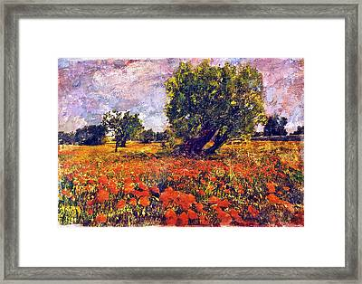 Poppies Of Puglia Framed Print by Steven Boone