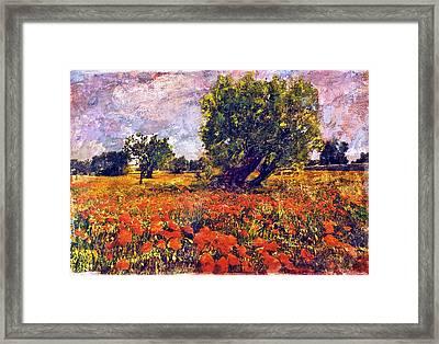 Poppies Of Puglia Framed Print