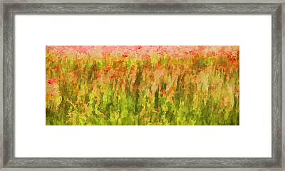 Poppies Of Tuscany IIi Framed Print by David Letts